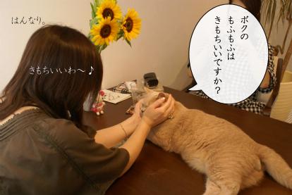 Cheeさん.jpg