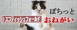 ブログ村ランキングに1日1票ありがとう!.jpg
