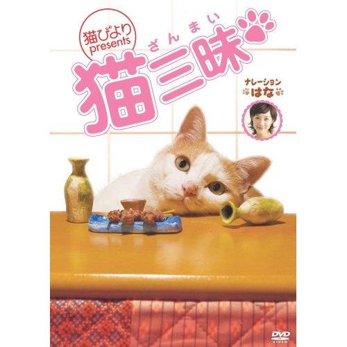 猫三昧.jpg